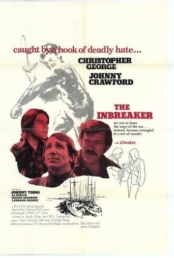 Poster of The inbreaker