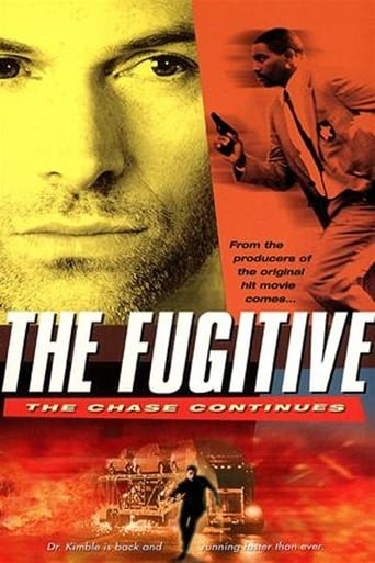 The Fugitive: The Chase Continues poster