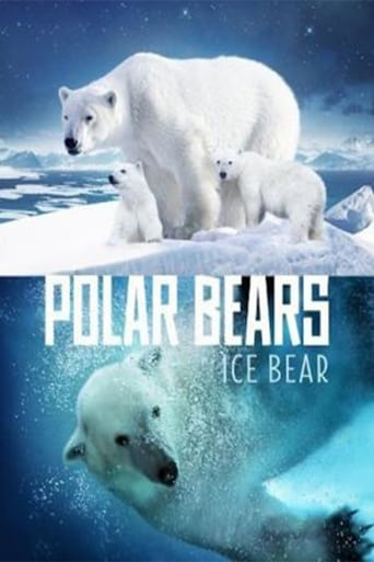 Poster of Polar Bears: Ice Bear