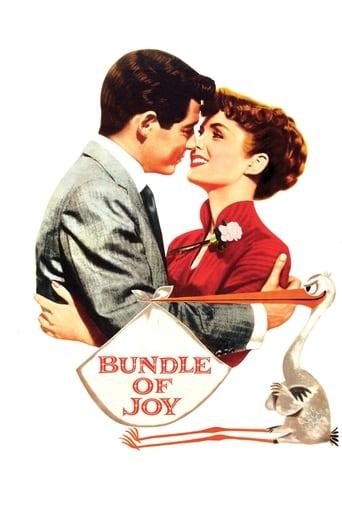 Poster of Bundle of Joy