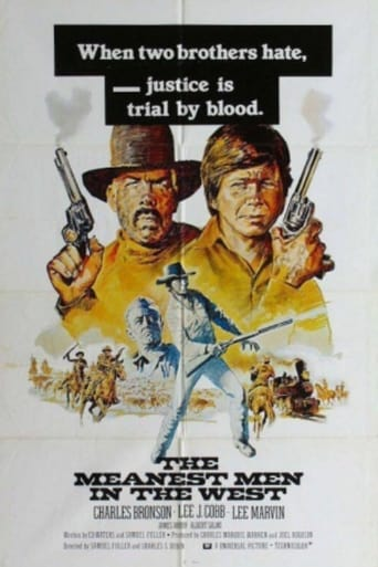 Poster of The Meanest Men in the West