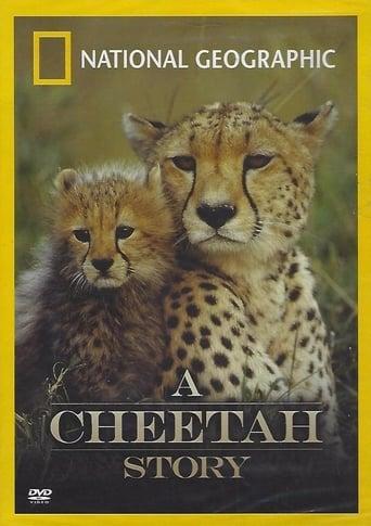Poster of Cheetah Story