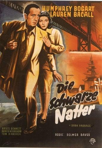 Poster of Die schwarze Natter