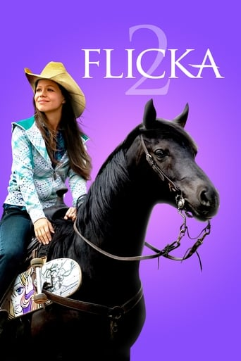 Poster of Flicka 2