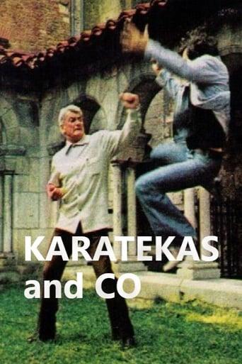 Poster of Karatékas and Co