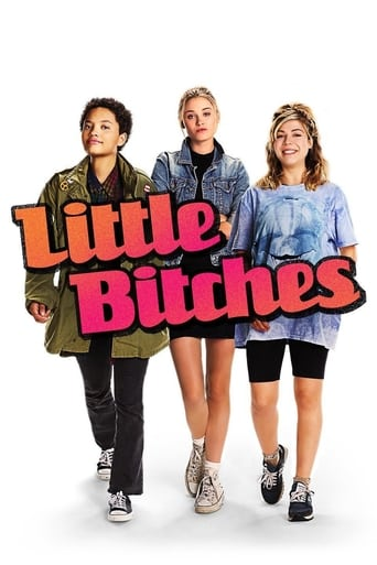 Poster of Little Bitches