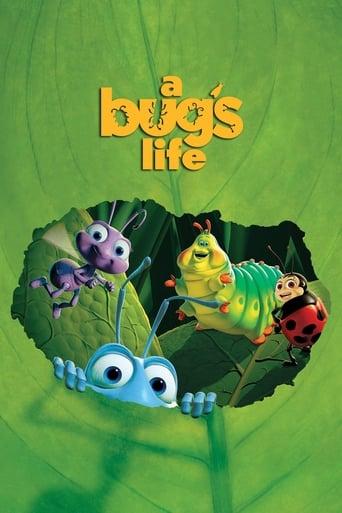 Poster of زندگی یک حشره