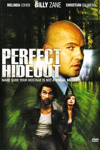 Poster of Perfect Hideout