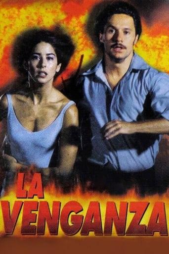 Poster of The Revenge