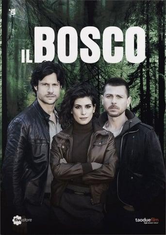 Poster of Il Bosco