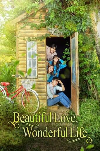 Poster of Beautiful Love, Wonderful Life
