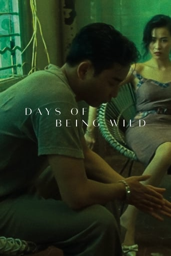 Poster of Days of Being Wild