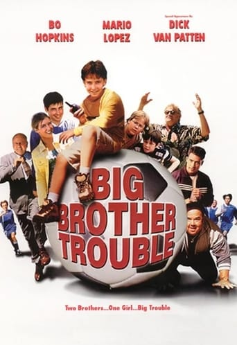 Poster of Big Brother Trouble