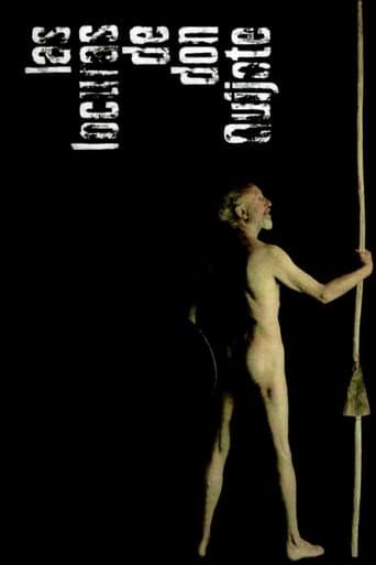 Poster of Las locuras de don Quijote