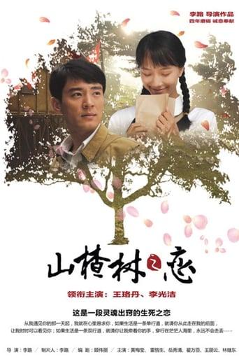 Poster of 山楂树之恋