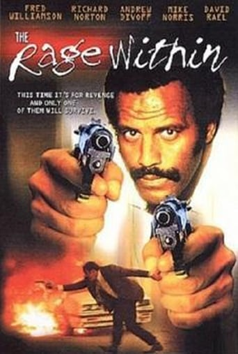 Poster of The Rage Within