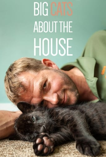 Poster of Big Cats About The House