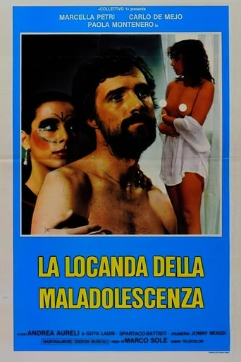 Poster of The Inn of Maladolescenza