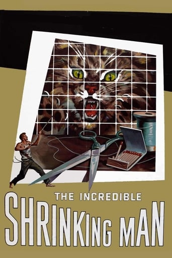 Poster of The Incredible Shrinking Man