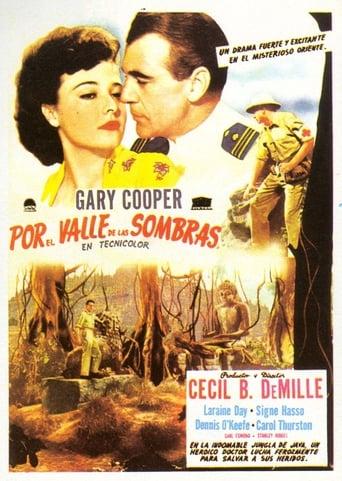 Poster of Por el valle de las sombras