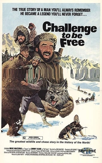 Poster of Challenge to be Free