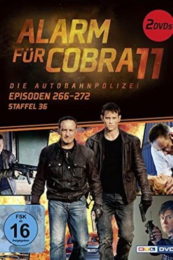 Staffel 36 (2015)