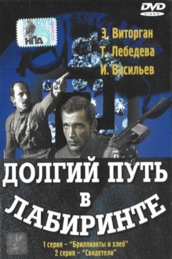Poster of Долгий путь в лабиринте