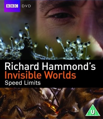 Poster of Richard Hammond's Invisible Worlds: Speed Limits