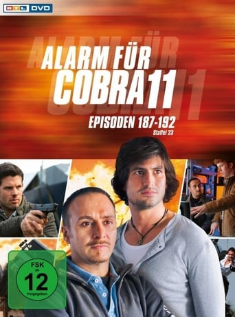 Staffel 28 (2011)