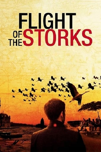 Flight of the Storks poster