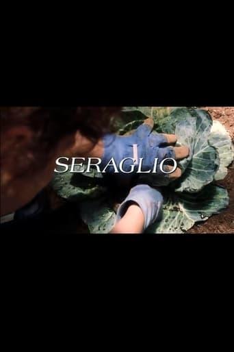Poster of Seraglio