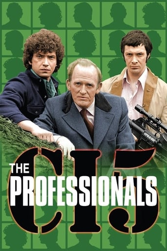 Poster of The Professionals