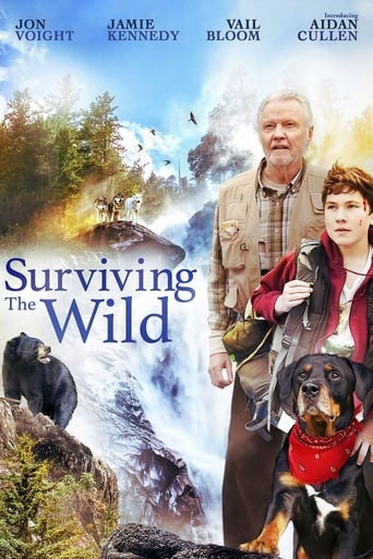 Poster of Surviving The Wild
