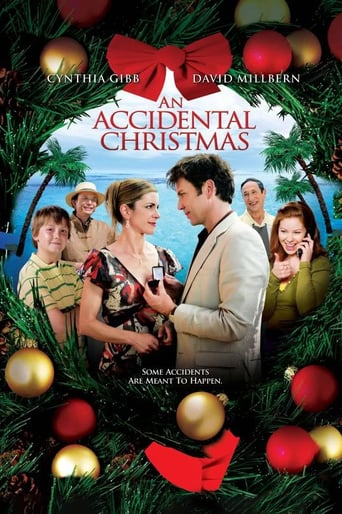 Poster of An Accidental Christmas
