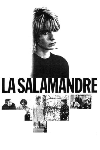Poster of The Salamander