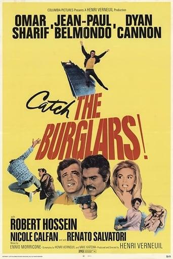 Poster of The Burglars
