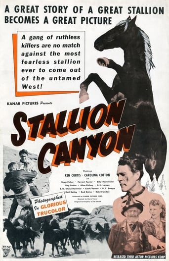 Poster of Stallion Canyon