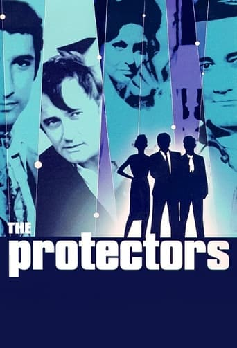 Poster of The Protectors