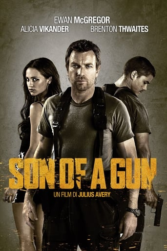 Poster of Son of a gun