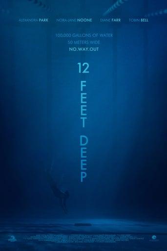 Poster of 12 Feet Deep