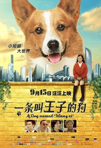 A Dog Named Wang Zi
