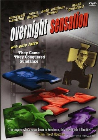 Poster of Overnight Sensation