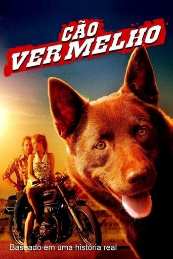 Cão Vermelho - Poster