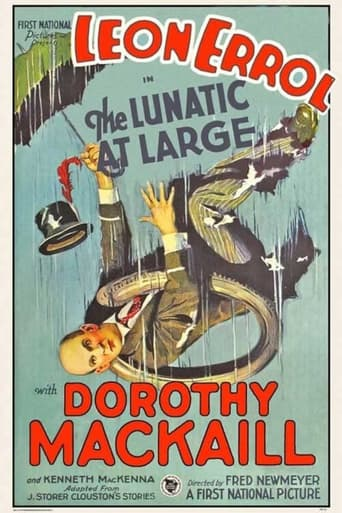 Poster of The Lunatic at Large