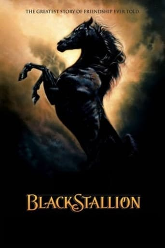 Poster of The Adventures of the Black Stallion