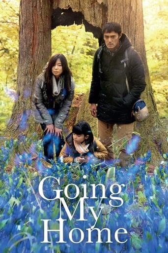 Poster of Going My Home