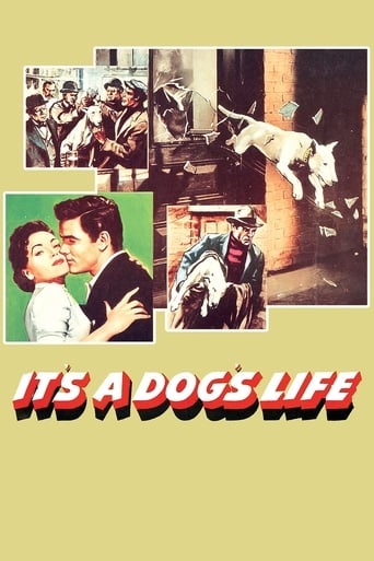 Poster of It's a Dog's Life