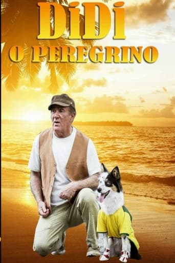 Poster of Didi, o Peregrino