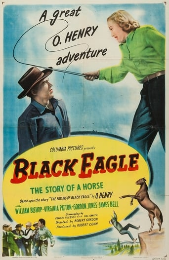Poster of Black Eagle