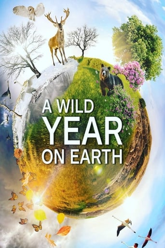 Poster of A Wild Year On Earth